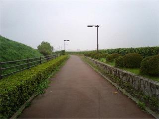 20060723.jpg