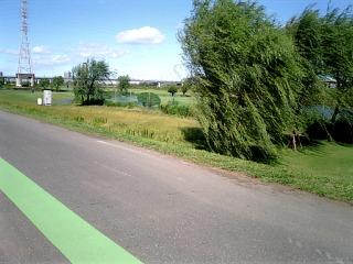 20061008_3.jpg