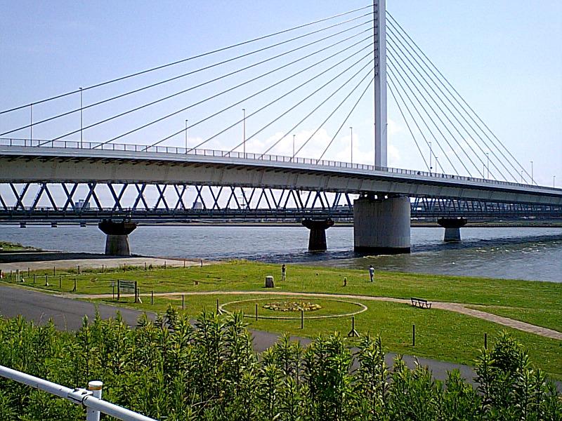 20070603.jpg